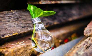 Eco friendly business practices